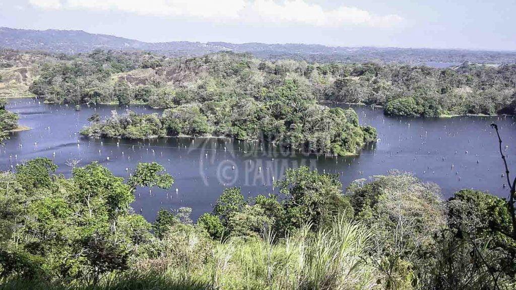 Gatun-lake-view