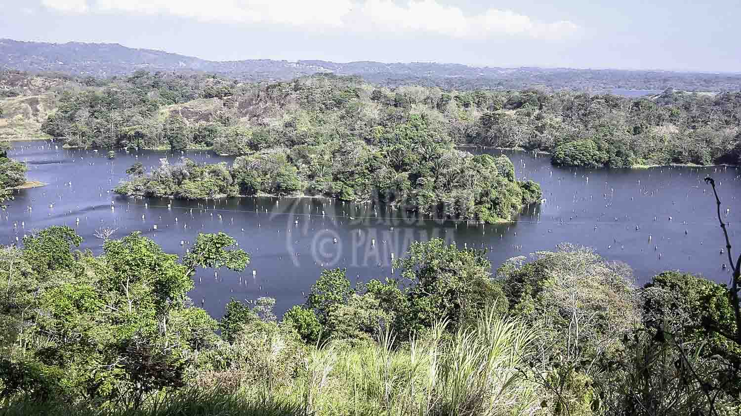 Gatun-lake-view