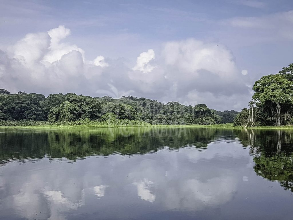 beautiful-lake-gatun
