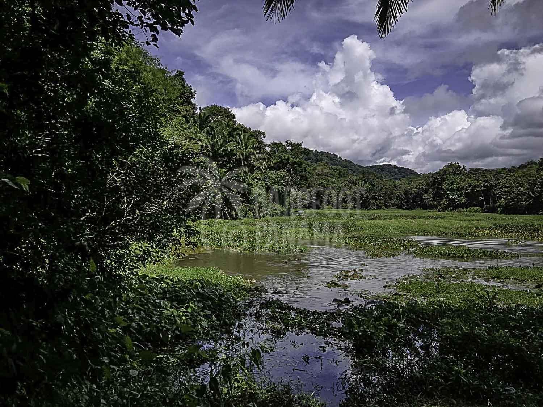 beautiful-lake-gatun-panama