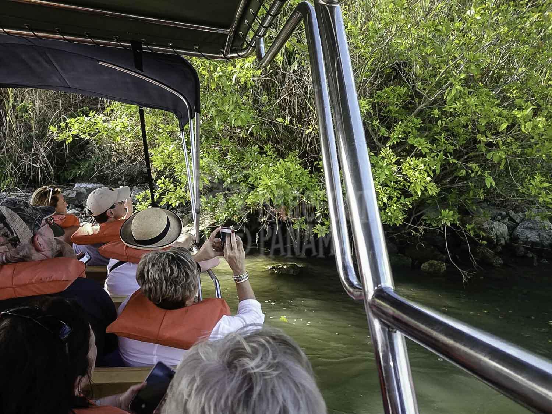boat-through-jungle-on-monkey-tour