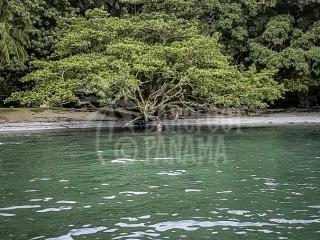 caribbean-beach-panama