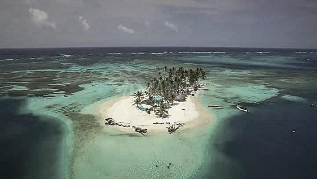 isla-perro-kuna-yala