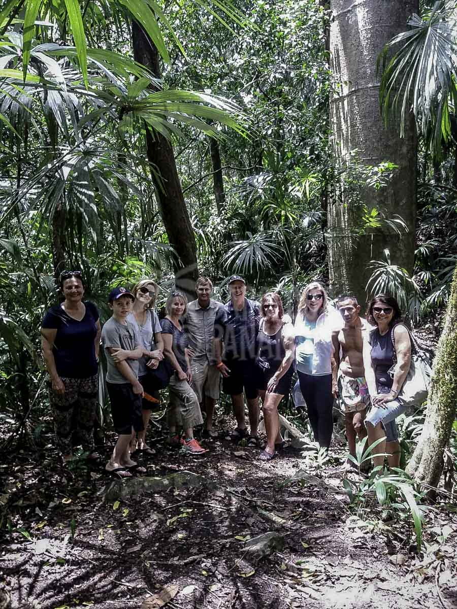 jungle-walk-on-tour