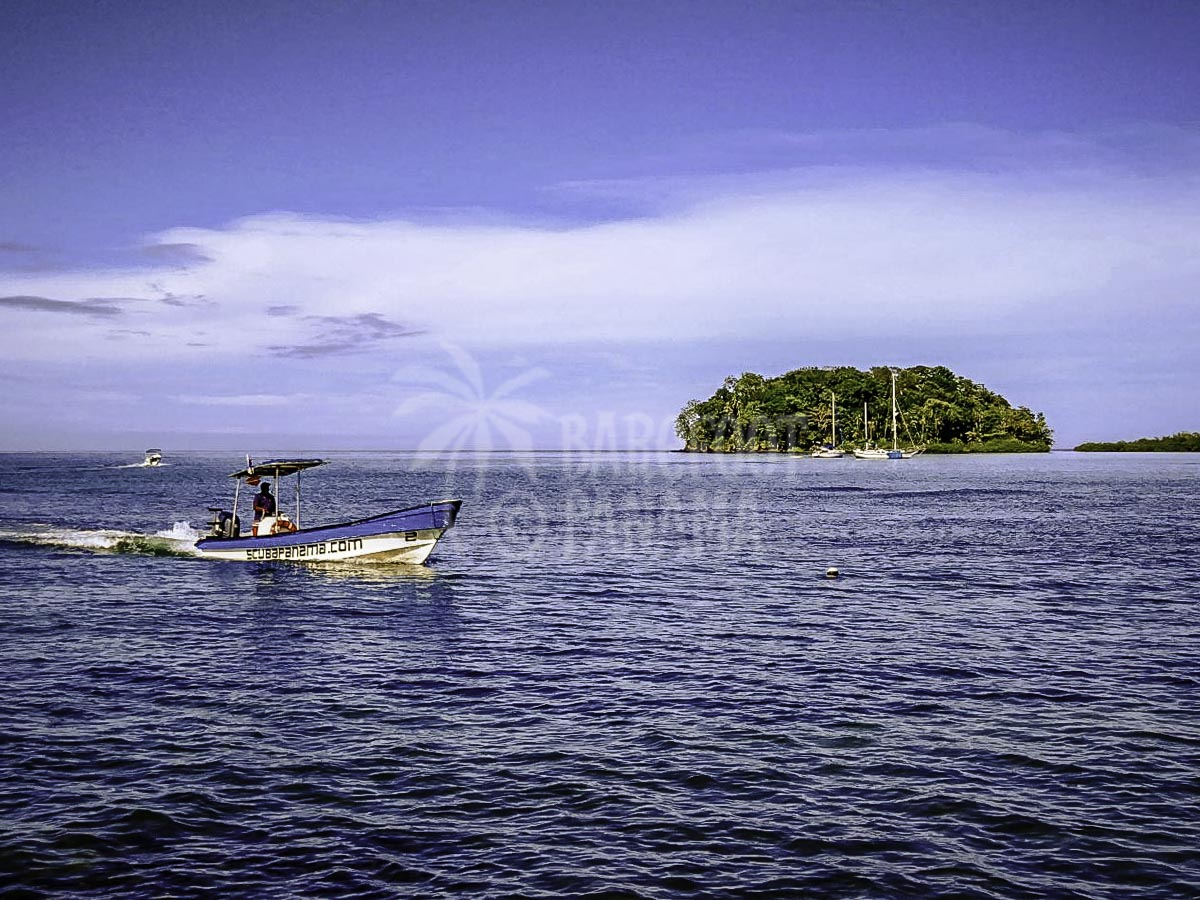 panama-scuba-tour-caribbean