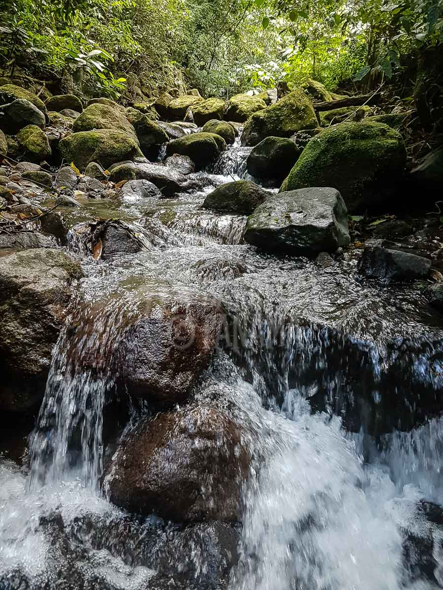 river-at-el-valle