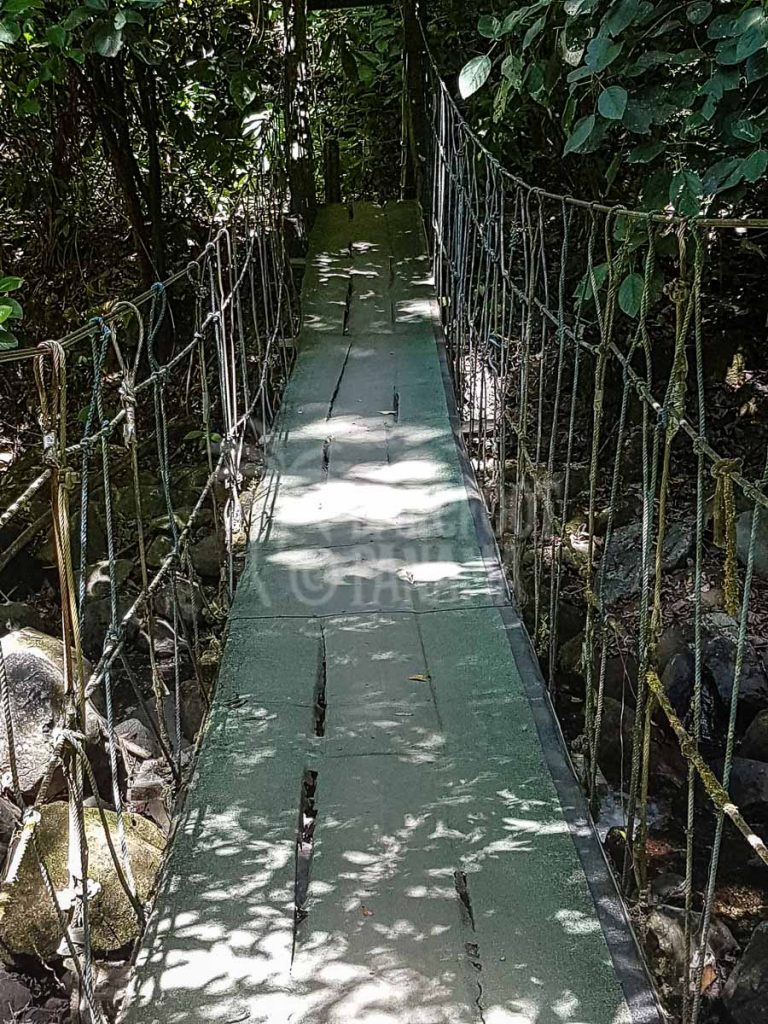 rope-bridge
