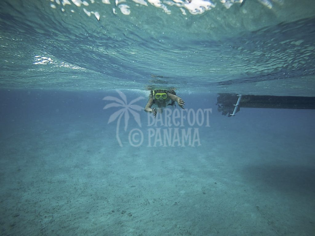 scuba-diving-tour-in-panama-caribbean