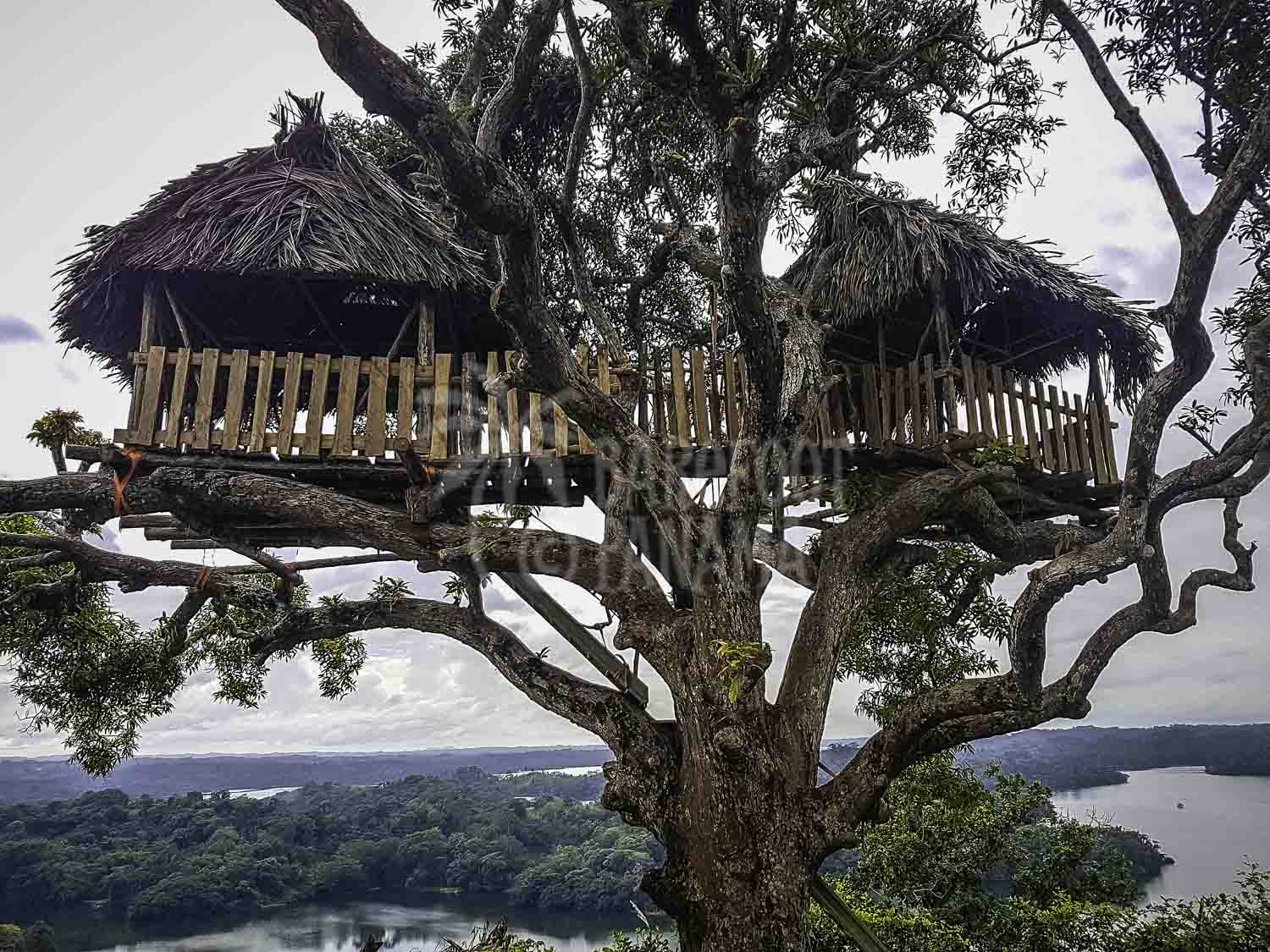 treehouse-at-panama-zipline-base